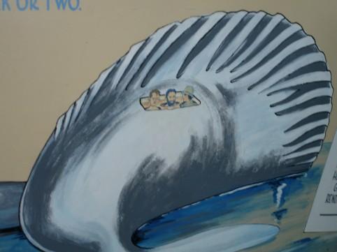 eingebettet im getöteten Wal