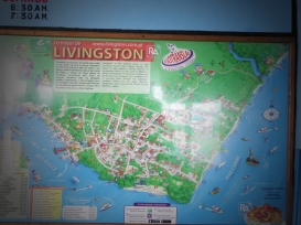 Stadtplan von Livingston