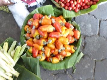 das sind Cashew-Kerne mit anhängender Frucht
