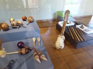 Instrument aus Gürteltier